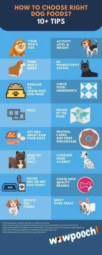 How to Choose The Right Food For Your Dog (18 Super Tips)
