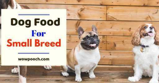 Dog Food Brands For Small Breeds: Dry & Canned