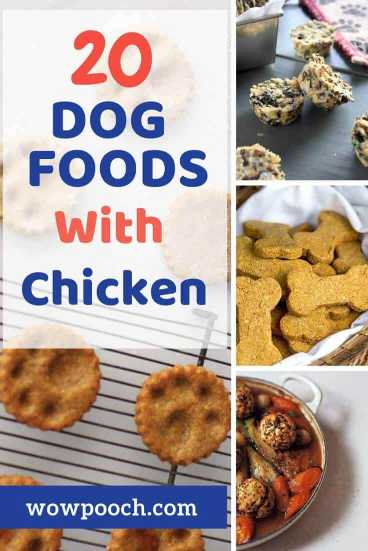 20 Homade Dog Food Recipes 20 homemade dog food recipes made with chicken - wowpooch