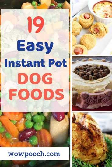 Instant pot dog food recipes