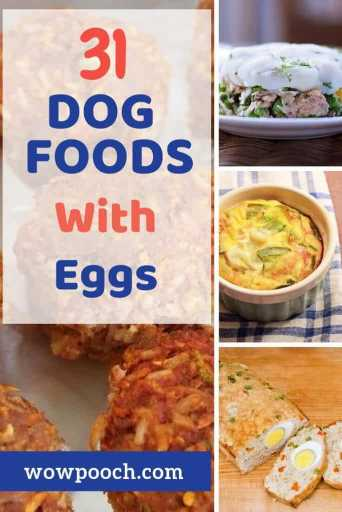 Dog Food Recipes With Eggs