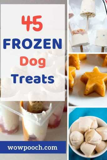 45 Frozen Dog Food