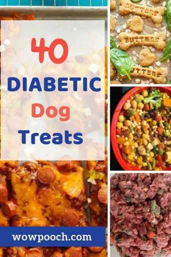Diabetic Dog Treats You Can Easily Make