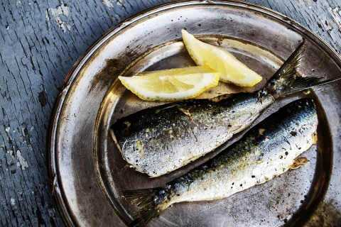 Salmon and Sardine Chow
