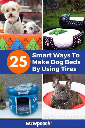 25 DIY Dog Beds Ideas Using Tires