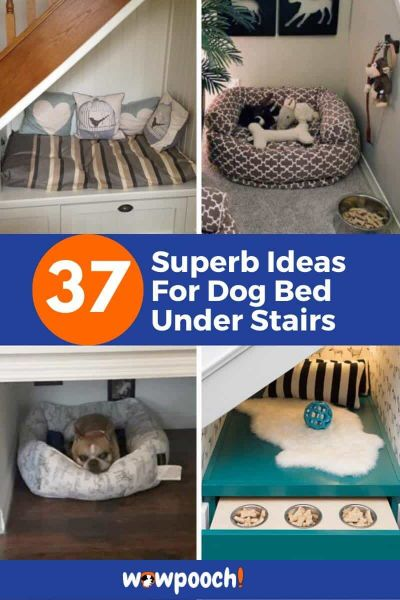 Dog Bed Ideas Under Stairs