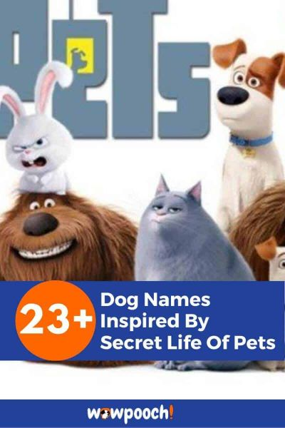 Dog Names From The Secret Life of Pets